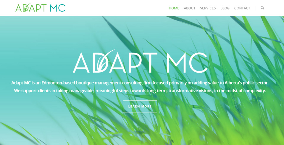 adapt-mc-home
